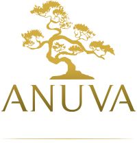 Anuva Investments